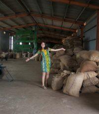 sylvana-mim-cashew-field-visit